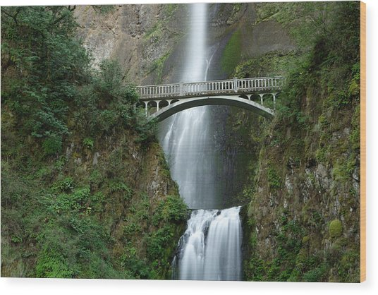 Multnomah Falls Wood Print by Eric Foltz