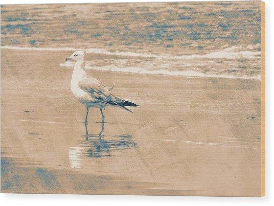 Ocean Breeze Walk Wood Print by JAMART Photography