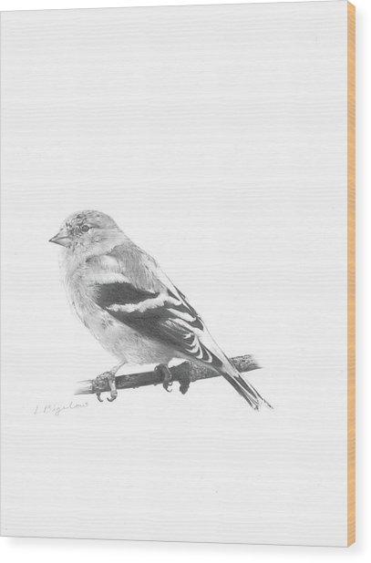 Orbit No. 6 Wood Print
