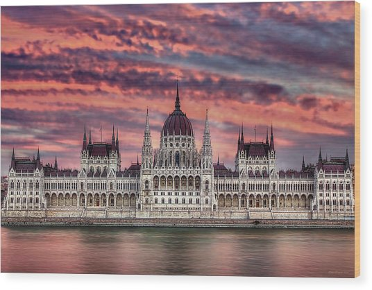 Pink Parliament Wood Print