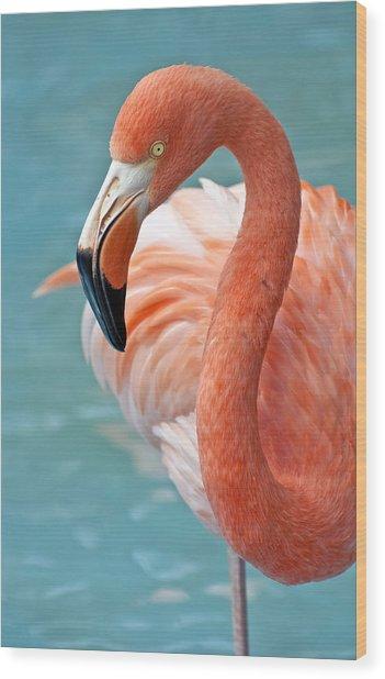 Pink Flamingo. Wood Print