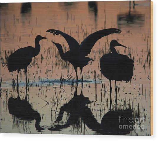 Sandhill Cranes At Sunset  Wood Print