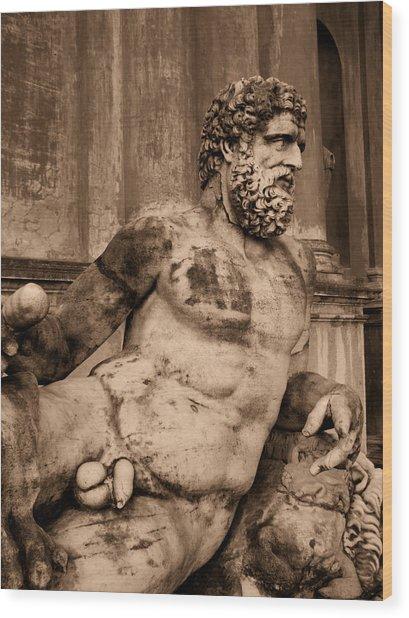 Sculpture Vatican Museum Rome Italy Wood Print by Wayne Higgs