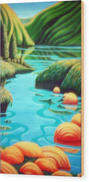 Stepping Stones Wood Print by Barbara Stirrup