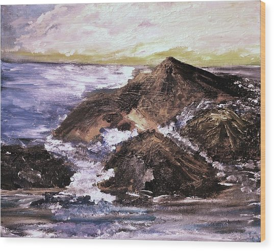 Stones In The Ocean Wood Print by Evelina Popilian