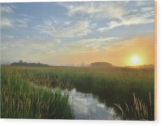 Sunrise At Glacial Park Wood Print