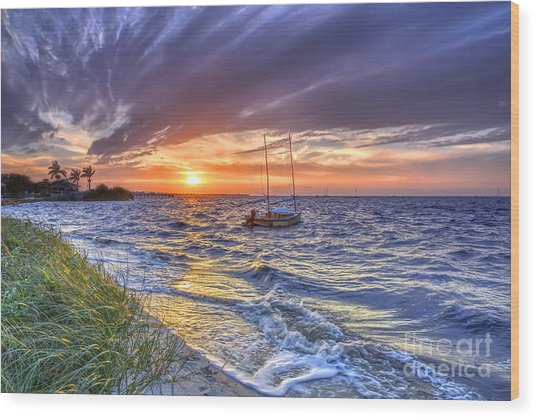 Sunset Sail Wood Print by Rick Mann
