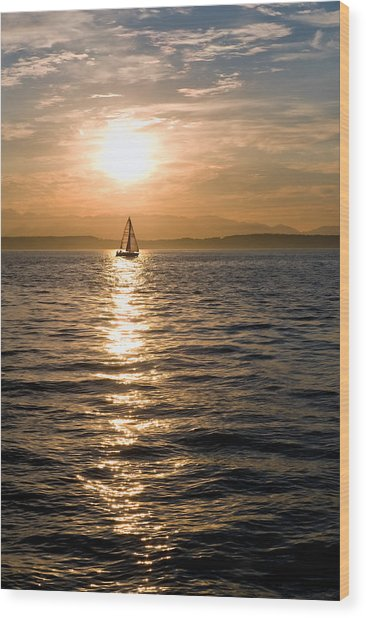 Sunset Sail Wood Print by Tom Dowd