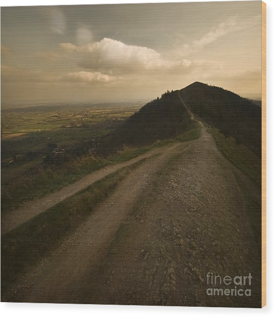 The Malvern Hills Wood Print by Angel Ciesniarska