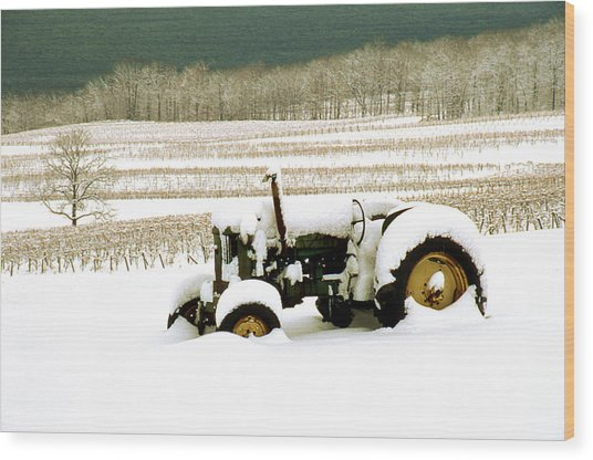 Tractor In Snowy Vineyard Wood Print