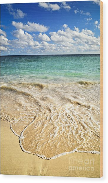 Tropical Beach  Wood Print