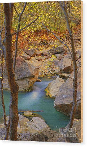 Virgin River In Autumn Wood Print by Dennis Hammer