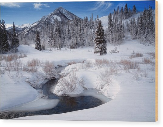 Wasatch Mountains In Winter Wood Print