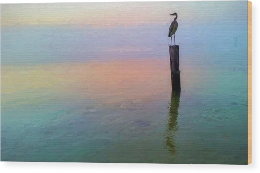 Watching Over Pensacola Bay Wood Print by JC Findley