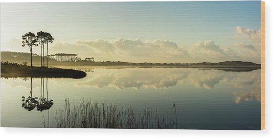 Western Lake Misty Morning Panorama Wood Print