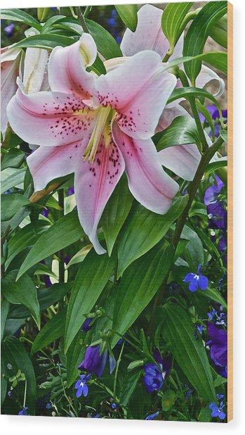 2015 Summer At The Garden Event Garden Lily 3 Wood Print