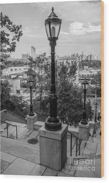 215th Street Stairs  Wood Print