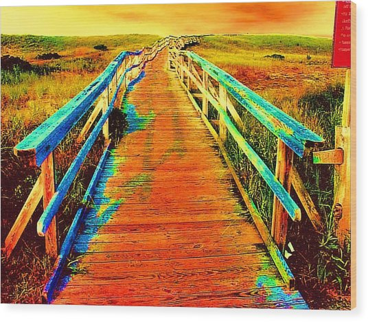 2355z  Wooden  Walkway Wood Print by Ed Immar