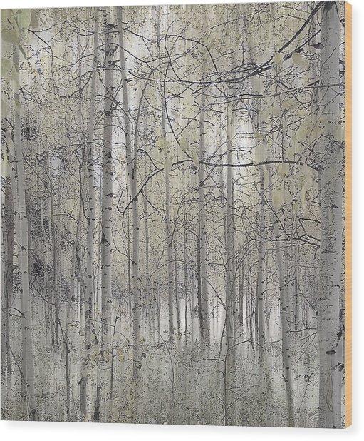 238 Wood Print