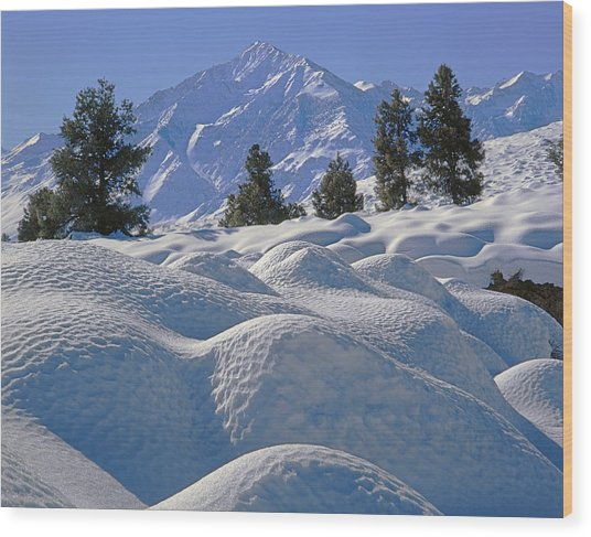 2m6402 Mt. Tom From Sherwin Grade Wood Print