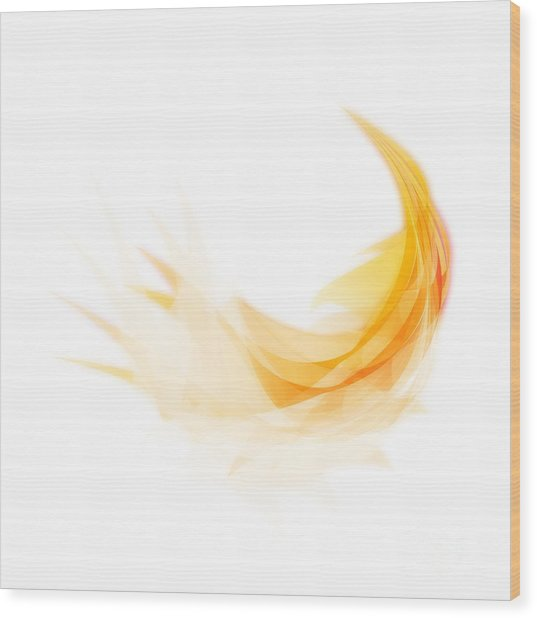 Abstract Feather Wood Print