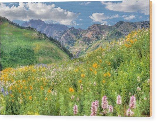 Albion Basin Wildflowers Wood Print