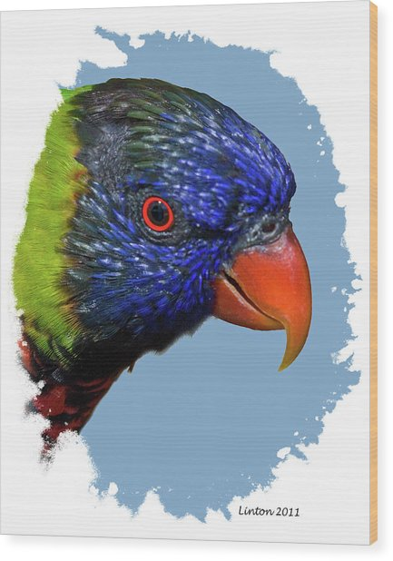 Australian Lorikeet Wood Print by Larry Linton