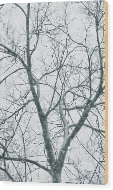 Blizzard Wood Print by JAMART Photography