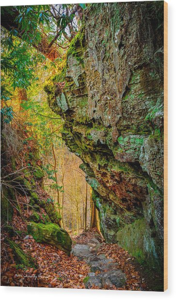 3 Bridges Trail #1 Wood Print
