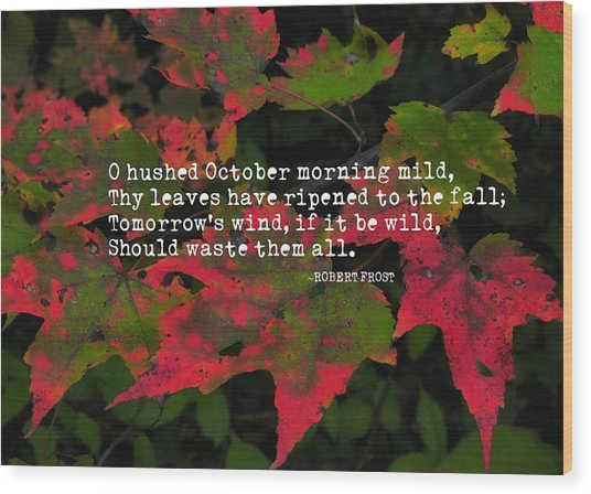 Changing Color Quote Wood Print by JAMART Photography