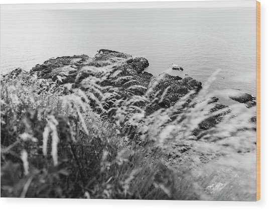 Cliffs At Kullaberg Wood Print