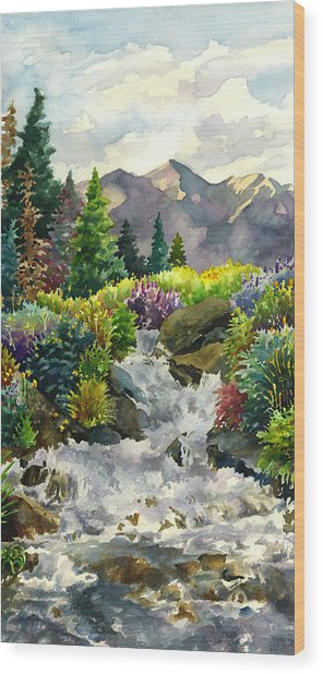 Colorado Waterfall Wood Print