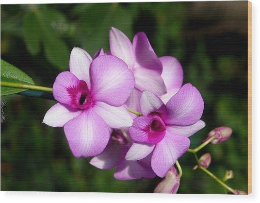 Flower Edition Wood Print