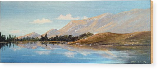 Inagh Valley Reflections Wood Print by Cathal O malley