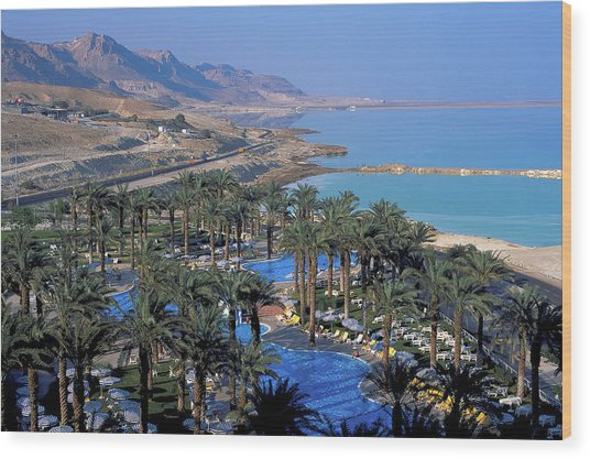 Luxury Resort On The Dead Sea Wood Print by Carl Purcell