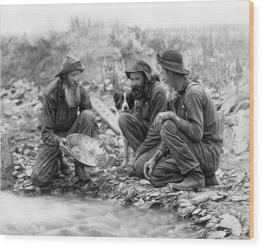 3 Men And A Dog Panning For Gold C. 1889 Wood Print