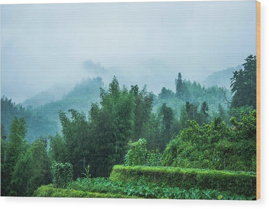 Mountains Scenery In The Mist Wood Print