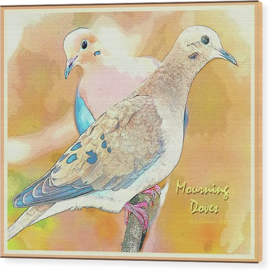 Mourning Dove Pair  Wood Print