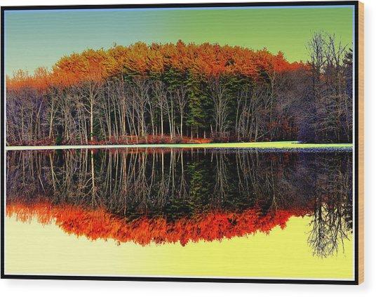Reflections At Farrington Lake Wood Print