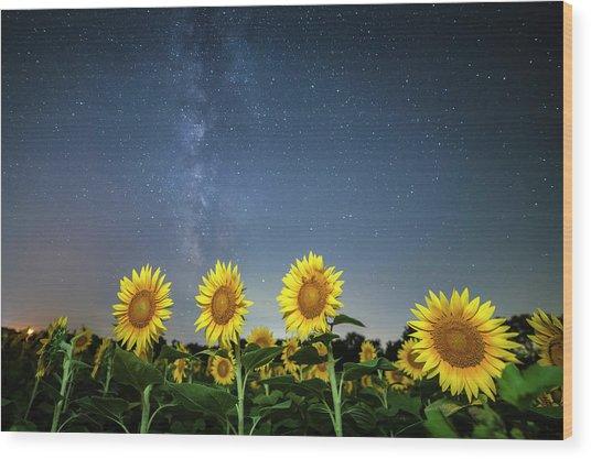 Sunflower Galaxy Iv Wood Print