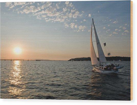 Sunset Sail Wood Print by Tom Dowd