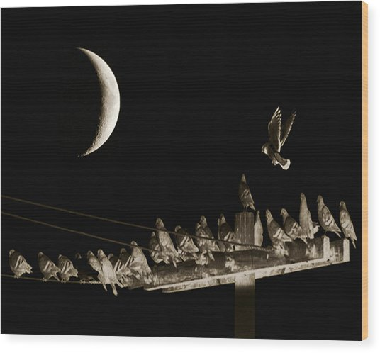 The Gathering Wood Print