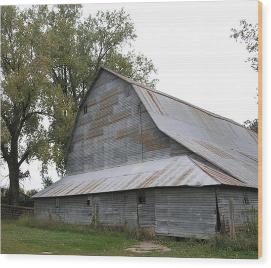 The Old Barn Wood Print by Janis Beauchamp