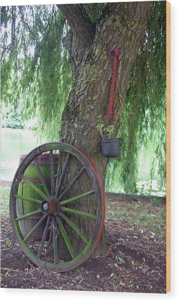 3 Wheels On My Wagon Wood Print by Jez C Self