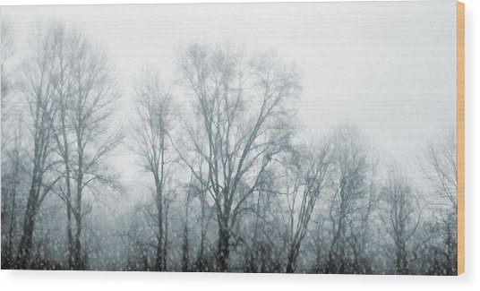 Winter View Wood Print by JAMART Photography