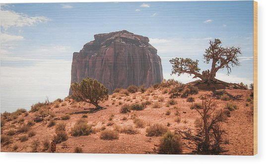 #3328 - Monument Valley, Arizona Wood Print