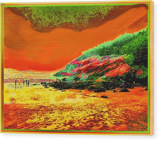 34g   Beach After A Storm Wood Print by Ed Immar