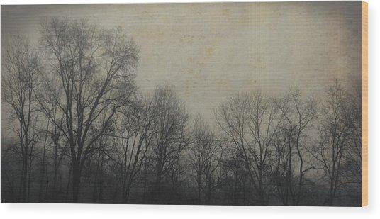 Bare Branch Horizon Wood Print by JAMART Photography