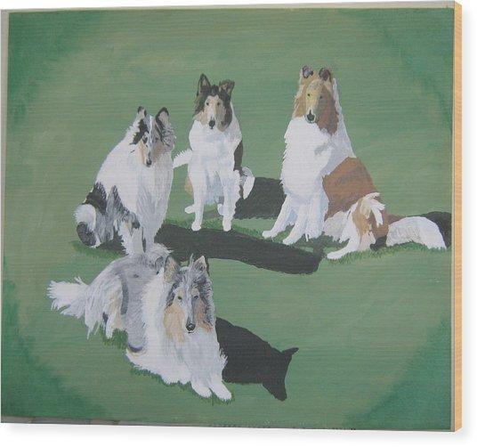4 Collies Wood Print by Wendy Jackson