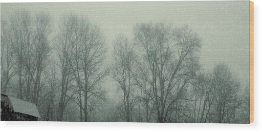Dead Of Winter Wood Print by JAMART Photography